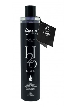 H2o Black No Smoke Tinting Treatment Hair Progressive Brush 300ml - Aegla Pro Beautecombeleza.com