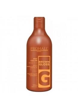 Brown Gloss Tinting Treatment Caramelum Effect Mask Pro Color 500ml - Prohall Beautecombeleza.com