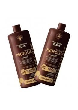 Gloss Reducer Propolis Extract Argan Restore Definitive Sealing Kit 2x1L - Agle Beautecombeleza.com